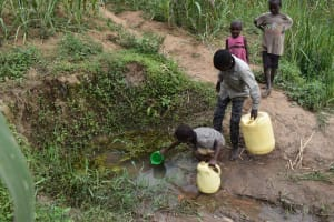 The Water Project: Makunga Community, Malaha Spring -  Fetching Water