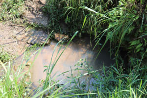 The Water Project: Emulele Community, Fanice Opati Spring -  Unprotected Waterpoint