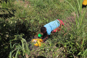 The Water Project: Emulele Community, Fanice Opati Spring -  Fetching Water