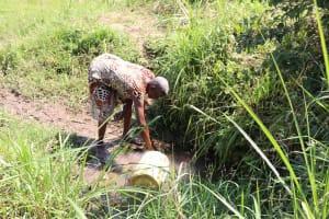 The Water Project: Emulele Community, Fanice Opati Spring -  Filling Jerrycan
