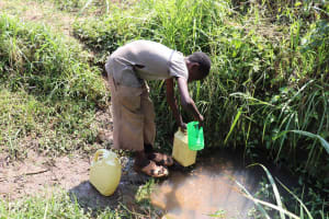 The Water Project: Emulele Community, Fanice Opati Spring -  Scooping Water