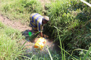 The Water Project: Emulele Community, Fanice Opati Spring -  Waiting For Water