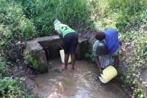 The Water Project: Isembe Community, Mangala Spring -  Fetching Water