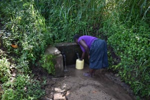 The Water Project: Isembe Community, Mangala Spring -  Tecla At Waterpoint
