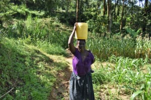 The Water Project: Isembe Community, Mangala Spring -  Tecla Carrying