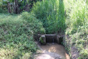 The Water Project: Isembe Community, Mangala Spring -  Unprotected Spring