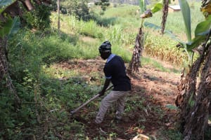 The Water Project: Isembe Community, Inyende Spring -  Ploughing The Farmland