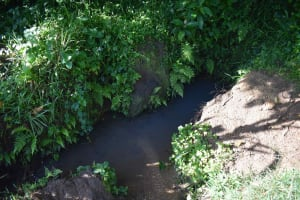 The Water Project: Isembe Community, Inyende Spring -  Unprotected Waterpoint