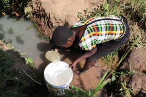 The Water Project: Isembe Community, Inyende Spring -  At The Source