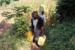 The Water Project: Isembe Community, Inyende Spring -  Boys Carrying Water