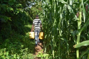 The Water Project: Isembe Community, Inyende Spring -  Long Way Home