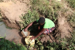 The Water Project: Isembe Community, Inyende Spring -  Scooping Water
