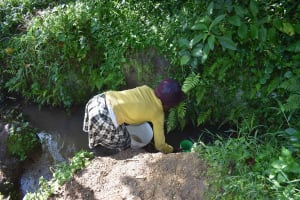 The Water Project: Isembe Community, Inyende Spring -  Sharon At Waterpoint