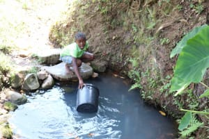 The Water Project: Emaongoyo Community, Philip Mwando Spring -  Fetching Water