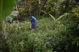 The Water Project: Emaongoyo Community, Philip Mwando Spring -  Julia In Garden