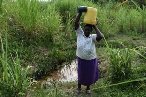 The Water Project: Lunyinya Community, Steven Shitundo Spring -  Mary Carrying Water