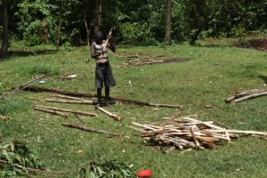The Water Project: Lunyinya Community, Steven Shitundo Spring -  Oscar Preparing Firewood