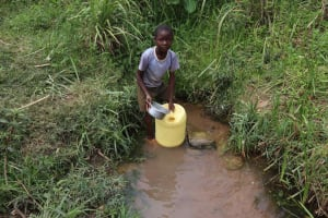The Water Project: Lunyinya Community, Steven Shitundo Spring -  Filling Jerrycan