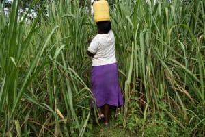 The Water Project: Lunyinya Community, Steven Shitundo Spring -  Long Walk Back