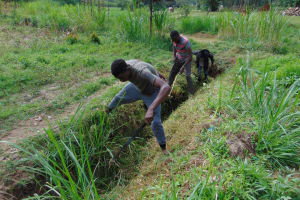 The Water Project: Mukangu Community, Mukasia Spring -  Site Clearance