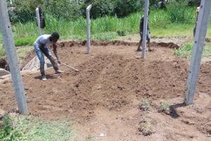 The Water Project: Mukangu Community, Mukasia Spring -  Grass Planting
