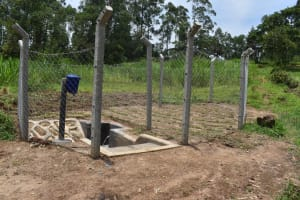 The Water Project: Mukangu Community, Mukasia Spring -  All Done