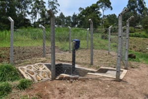 The Water Project: Mukangu Community, Mukasia Spring -  Ready For People