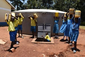 The Water Project: Gimomoi Primary School -  Carrying Water