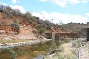 The Water Project: Kyamwalye Community -  Green Is Growing