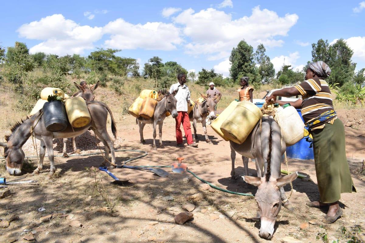 18 kenya4782 water for construction