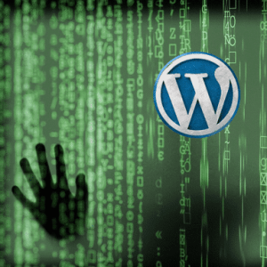 debuggage wordpress Montpellier