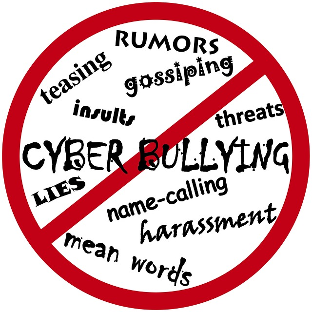 Aspergers and cyber bullying
