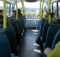 Dogs not allowed on some buses