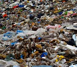 Landfill, freecycle changing the world