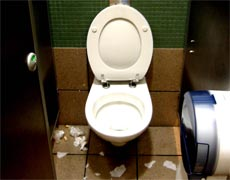 Another disgusting toilet, please learn to pee IN the toilet, not on it!