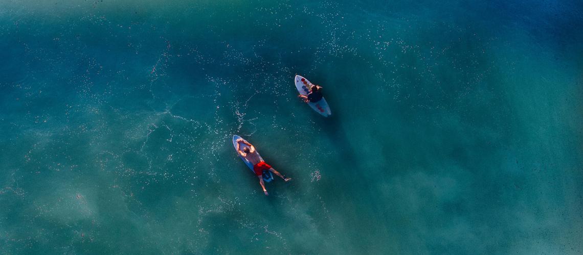 health website image surfers in line-up for wave - The Animals Melbourne Blog Image