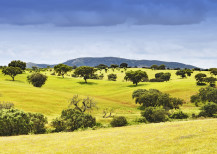 Alentejo: Portugal's best-kept secret