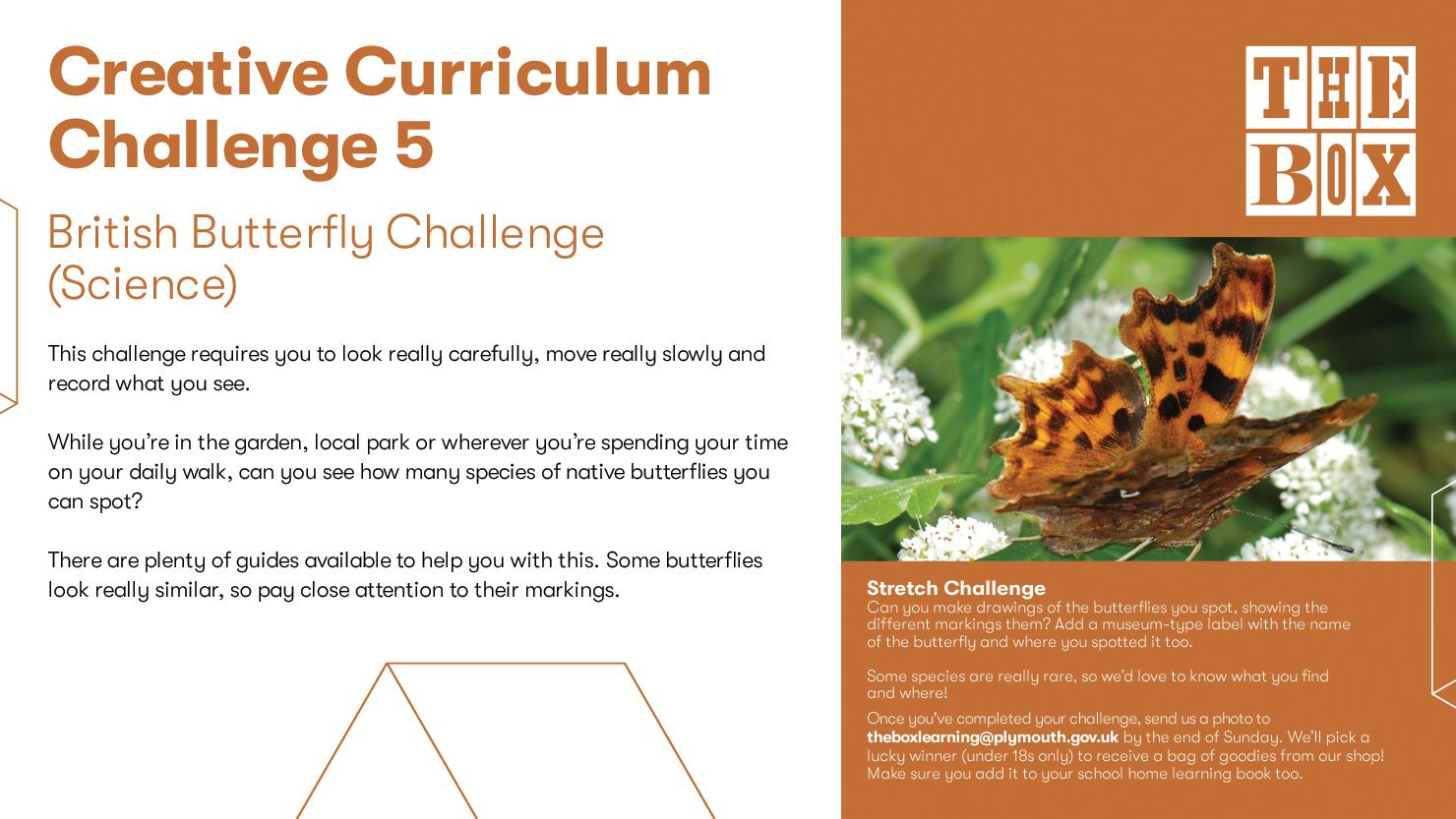 Graphic for The Box's Curriculum Challenge 5