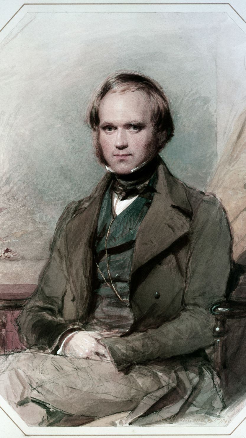 Charles Darwin by G Richmond