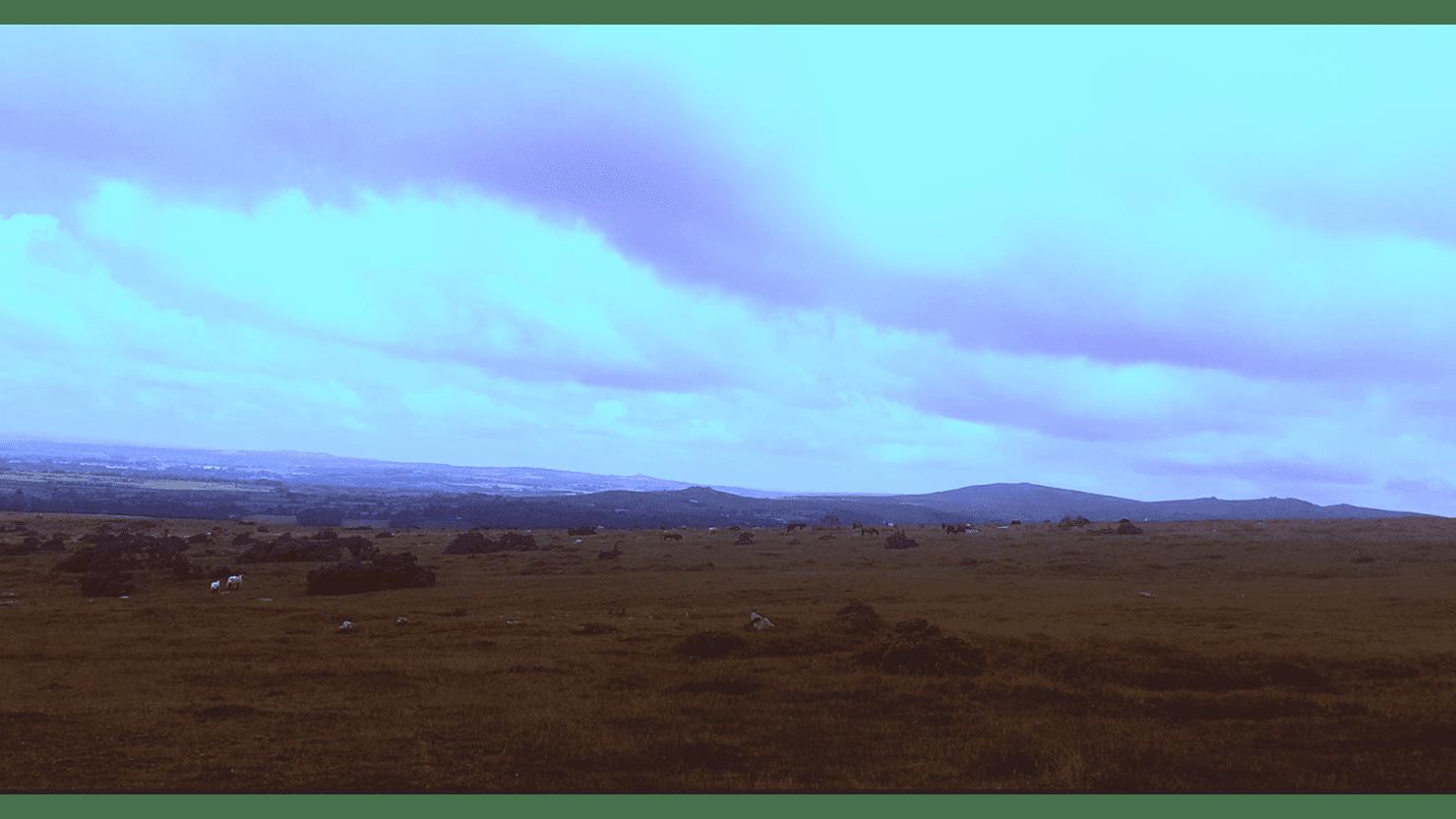 Dartmoor Film Still, by Emily Pope (2021)