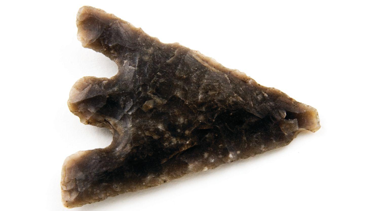 Prehistory: Image Bank