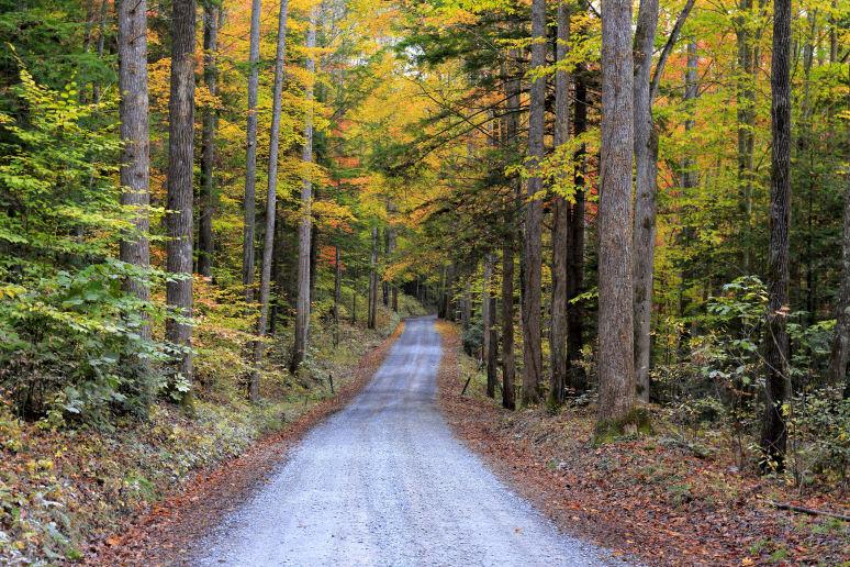 North Carolina: Great Smoky Mountains National Park