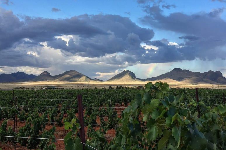 Callaghan Vineyards, Elgin, Ariz.