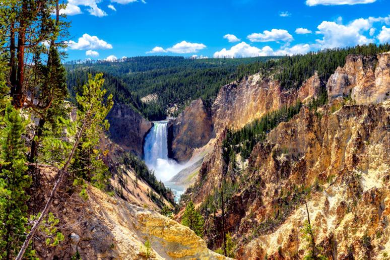Montana: Yellowstone National Park