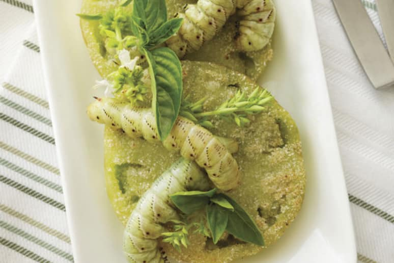 Fried Green Tomato Hornworms