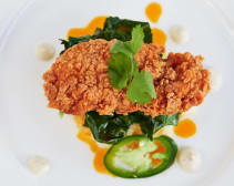 This ever-growing trend seems to indicate that the future may be meatless.