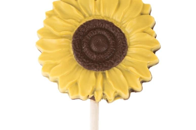 Sunflower Lollipop