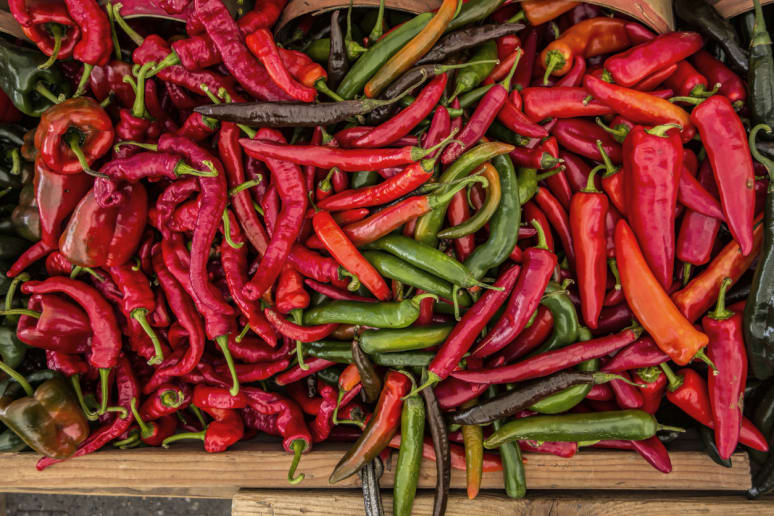 Eat Chile Peppers to Keep the Bugs Away