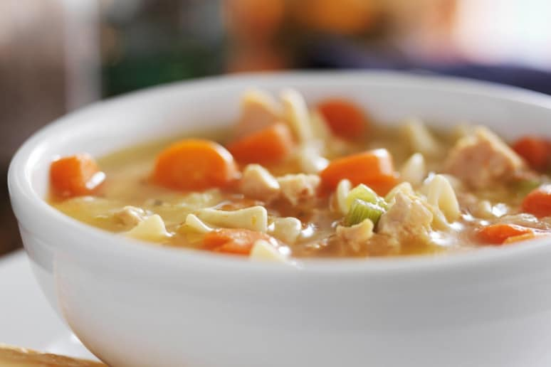 recipe: pheasant noodle soup recipes [4]