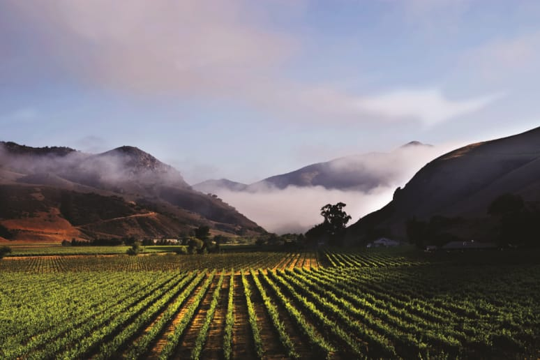 4. Au Bon Climat Winery, Santa Barbara, Calif.